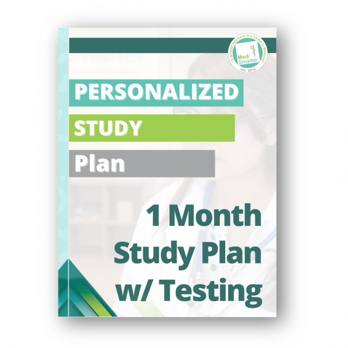 Personalized Study Plan with Testing